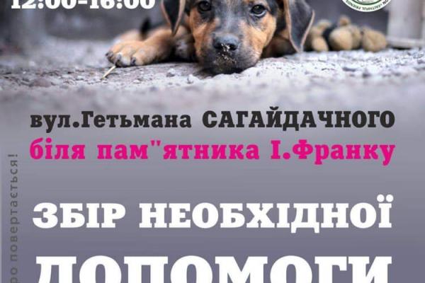 20 грудня у Тернополі збиратимуть допомогу для тварин