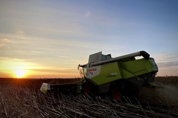 «Контінентал Фармерз Груп» підбиває підсумки збору пізніх зернових культур