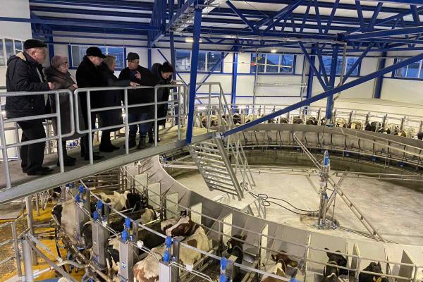 У Трибухівській ОТГ діє сучасна ферма ТзОВ «Бучачагрохлібпром» з новими технеологіями
