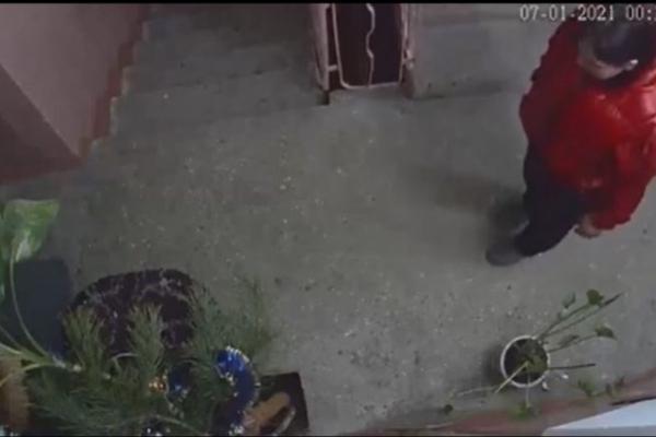 У Тернополі на Святвечір невідома жінка обікрала під'їзд