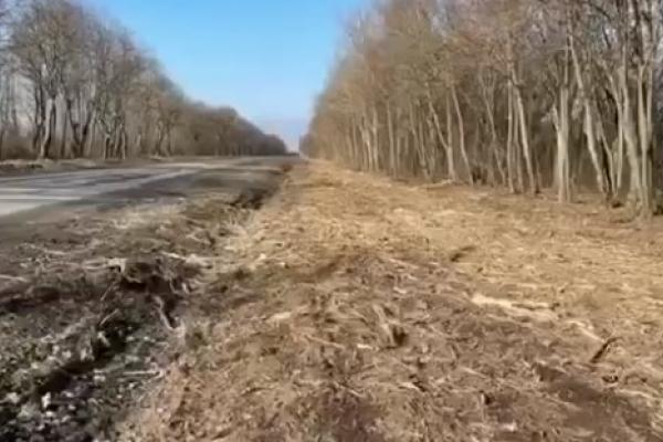 Шляховики Тернопільщини розпочали впорядкування узбіч державних доріг