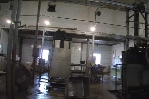 Через порушення на Тернопільщині припинили роботу м'ясопереробного цеху