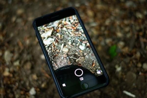 Що відомо про iPhone 13: чутки і думки аналітиків