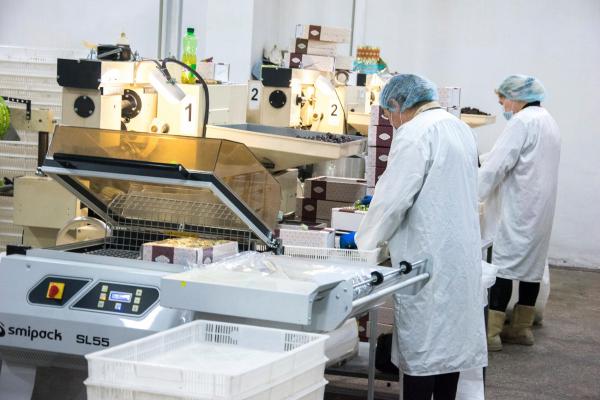 На Тернопільщині відновили виготовлення популярних радянських солодощів