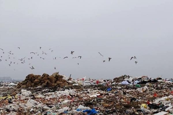 Завдяки знімкам з космосу на Тернопільщині виявили незаконне захоронення відходів
