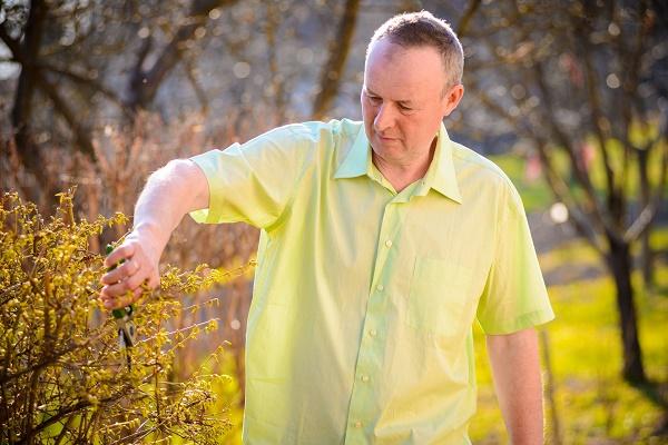 Професійний садівник з Теребовлі Михайло Войтович дає поради щодо ранньовесняного догляду саду