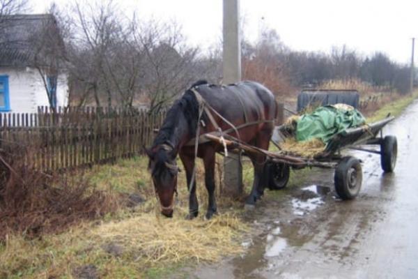 Зеленський запускає програму, яка принесе цивілізацію у село
