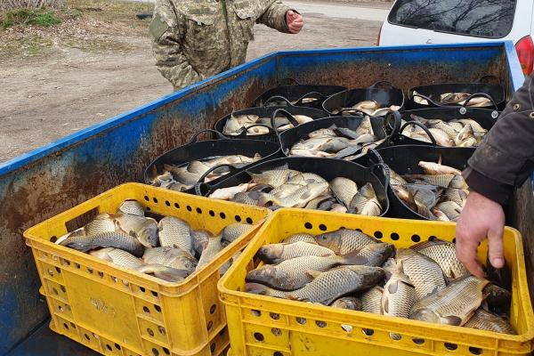 На Тернопільщині у став випустили понад тонну риби