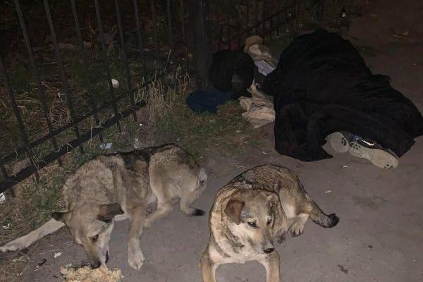 У Тернополі посеред вулиці померла жінка