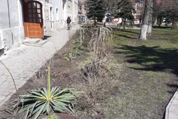 У Бережанському «Карітасі» провели весняну толоку