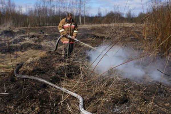 На Тернопільщині створили бригади для боротьби з пожежами торфу
