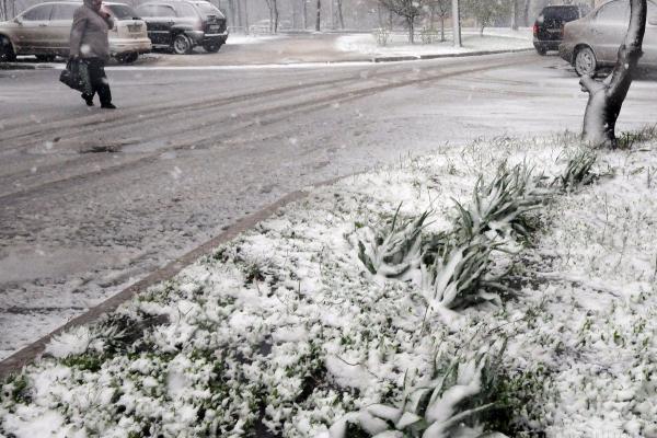 На вихідні в Україні прогнозують дощі та похолодання