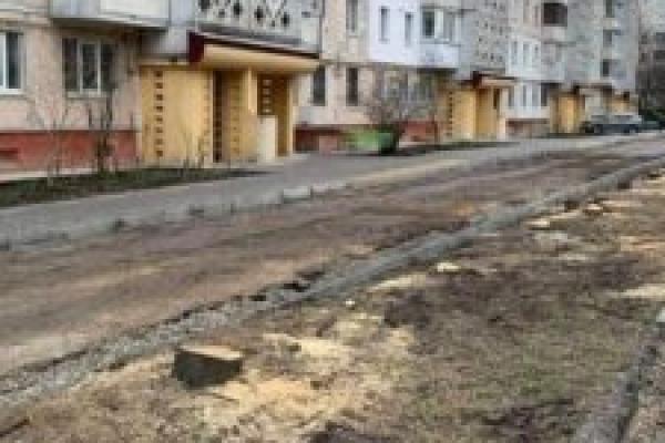 У Тернополі зрізали липову алею задля парковки