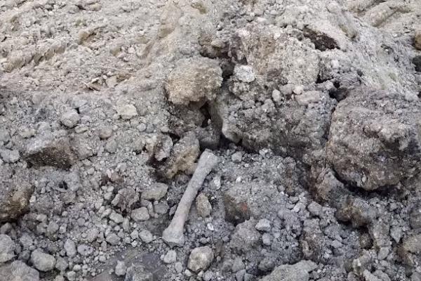 Будівельники знайшли вже другу кісту під час скандального будівництва у Тернополі (Відео)