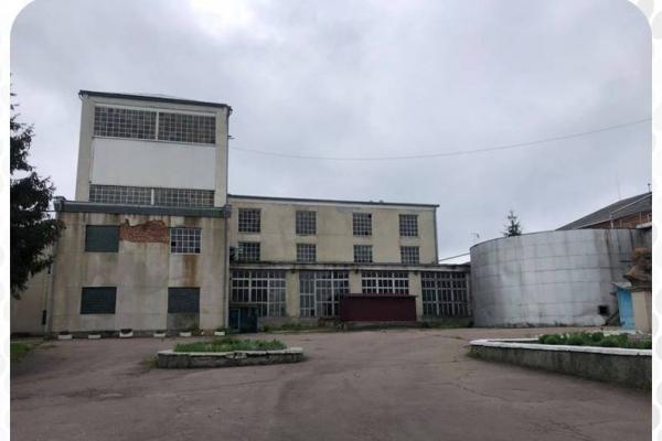 На Тернопільщині продали Мишковицький спиртзавод за 23 млн грн