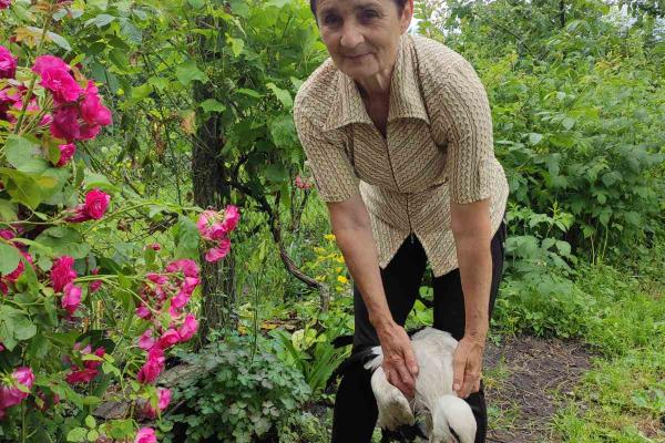 Рятівниця лелек з Кременеччини просить допомоги