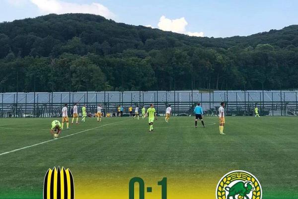 Тернопільська «Нива» виграла другий матч на підготовчому зборі