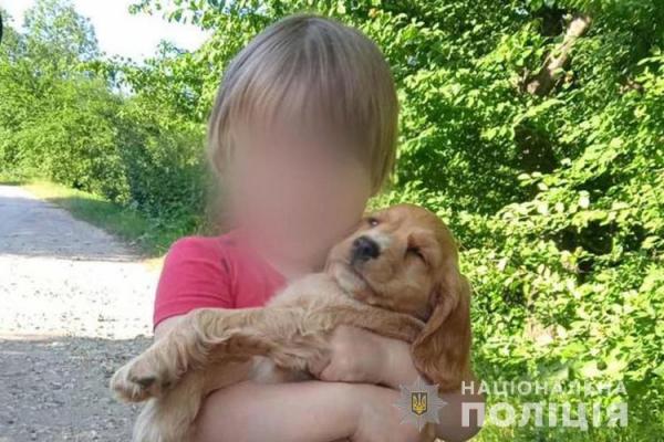 Сиділа в заростях біля дороги: на Тернопільщині розшукували 2-річну дівчинку