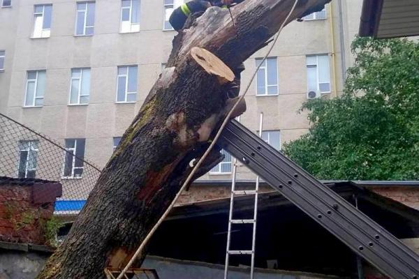 На Тернопільщині рятувальники ліквідовують наслідки негоди