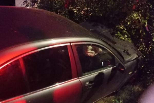 Зламав березу і перекрив рух: у Тернополі на вулиці Коновальця водій БМВ потрапив у ДТП