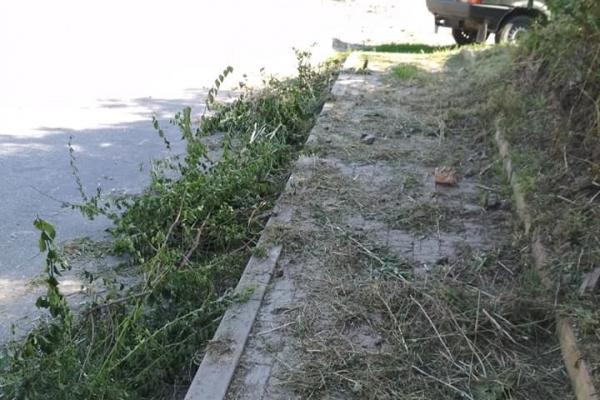 Жителі Бучача скаржаться на безлад у місті