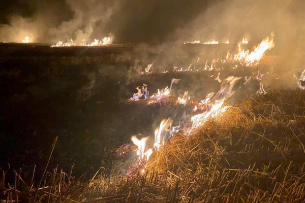 На Тернопільщині горіли післяжнивні залишки