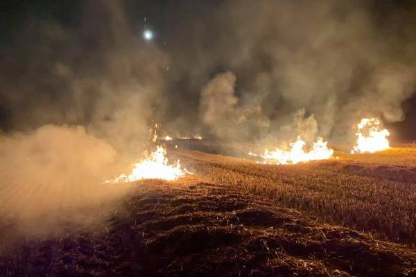 «Полум'я швидко поширювалося»: на Тернопільщині загорілися післяжнивні залишки
