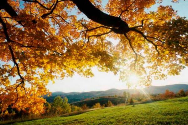 На Тернопіллі запанує тепла осінь