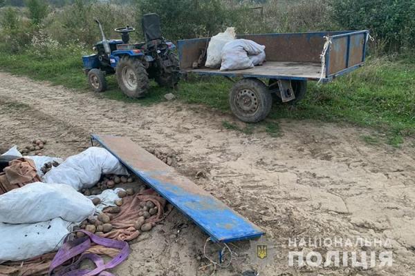 На Тернопільщині ДТП: не розминулися автомобіль та мотоблок
