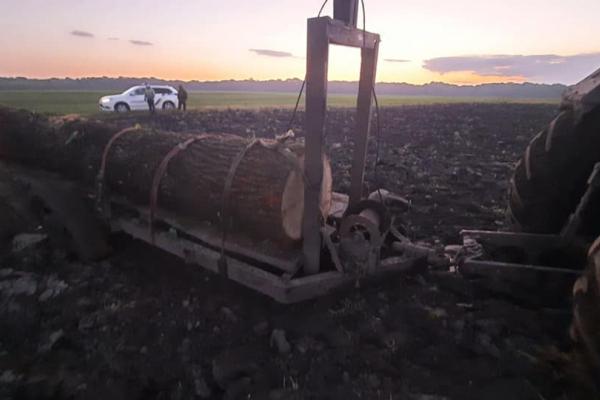Намагалися втекти: на Тернопільщині затримали крадіїв деревини