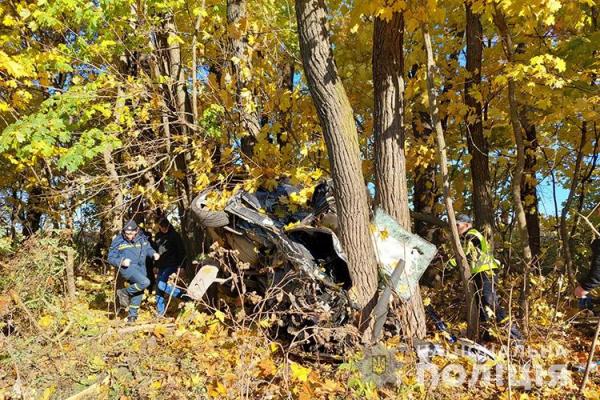 Неподалік Озерної водій Audi-А3 врізався в дерева, загинула пасажирка