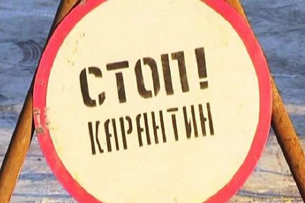У селі на Тернопільщині карантин через сказ (Відео)