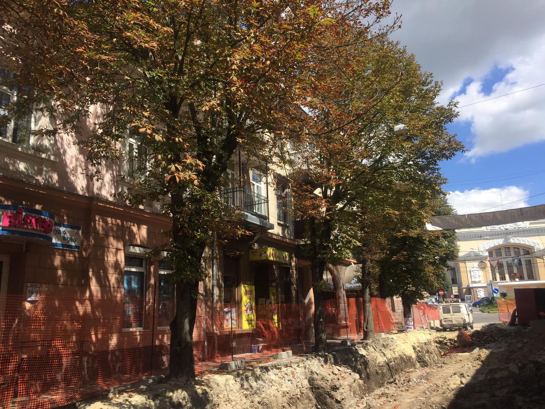 На вулиці Чорновола у Тернополі висадять 30 червонолистих кленів