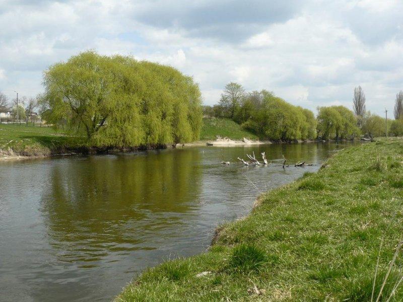 На Тернопільщині рятують річку Іква