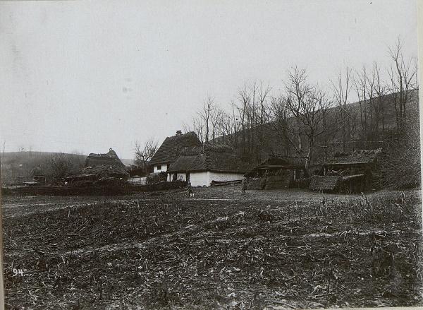 Село Вовківці 100 років тому